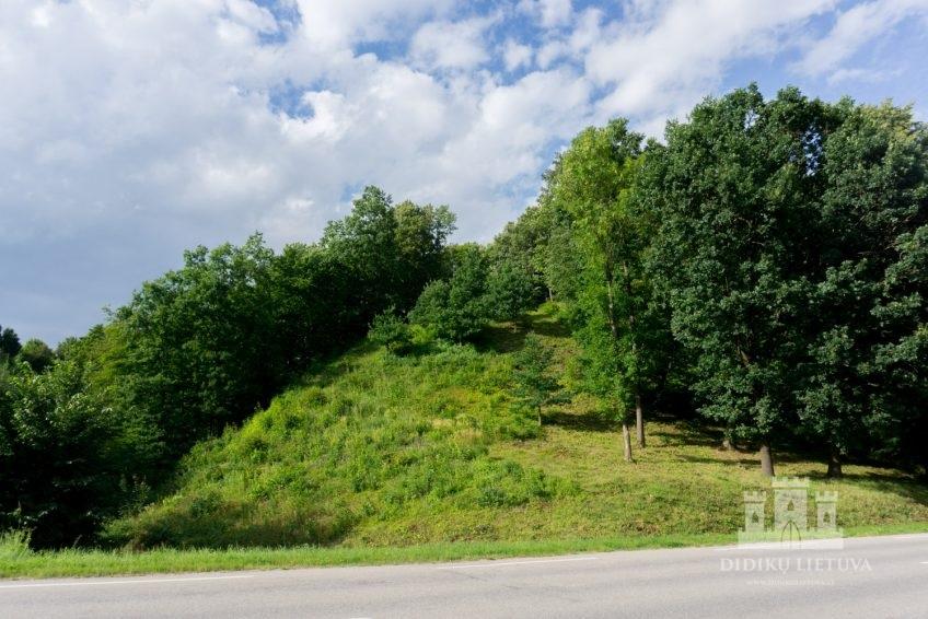 Kartupėnų piliakalnio su gyvenviete piliakalnis
