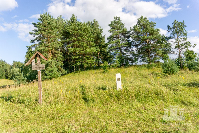 Dryžių piliakalnis