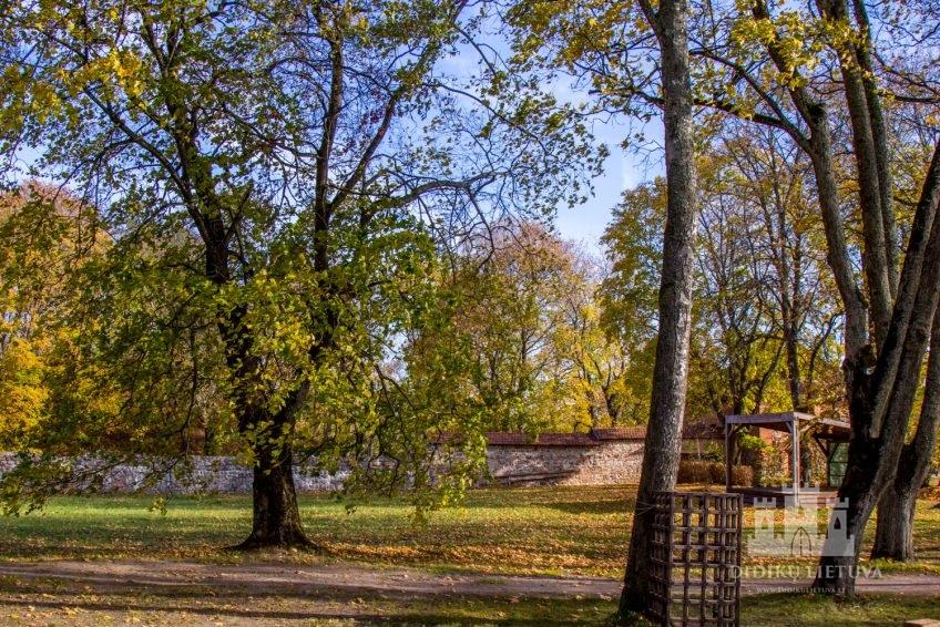 Trakų pusiasalio pilies liekanų ir kitų statinių komplekso parko fragmentai
