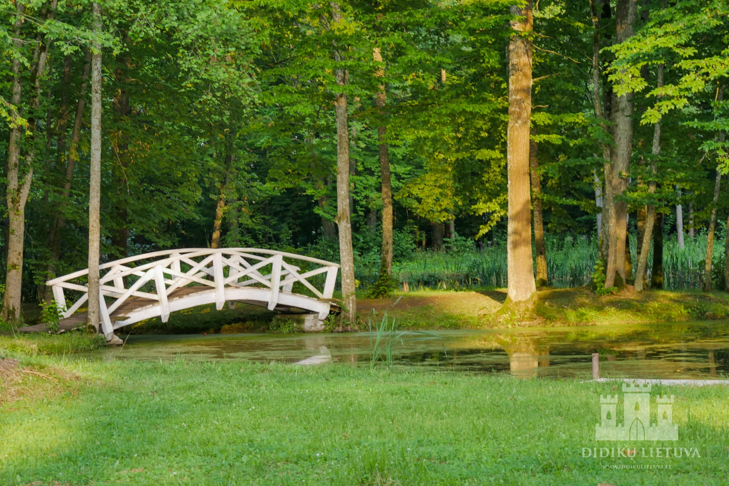 Zyplių dvaro sodybos parkas