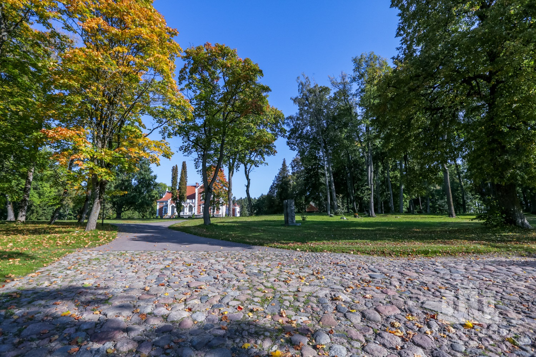 Šešuolėlių I dvaro sodybos parkas