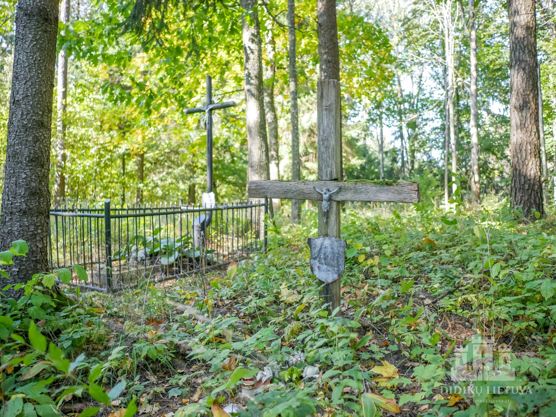 Šešuolėlių I dvaro sodybos senosios kapinės